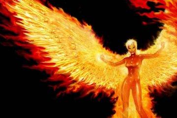 Agilap illustration phoenix