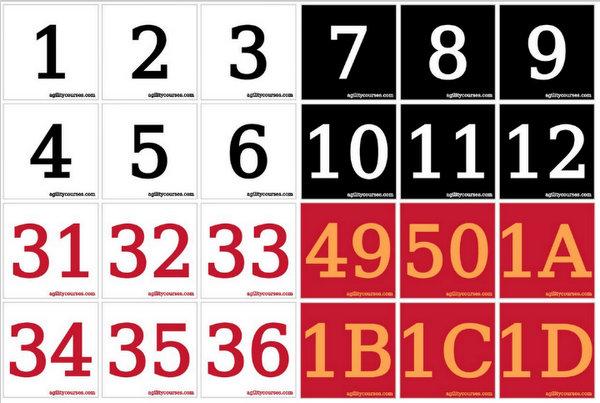 Custom Agility Cone Numbers