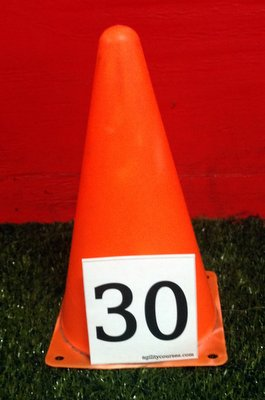 Image showing a 3 inch tall number on a 9 in tall cone.