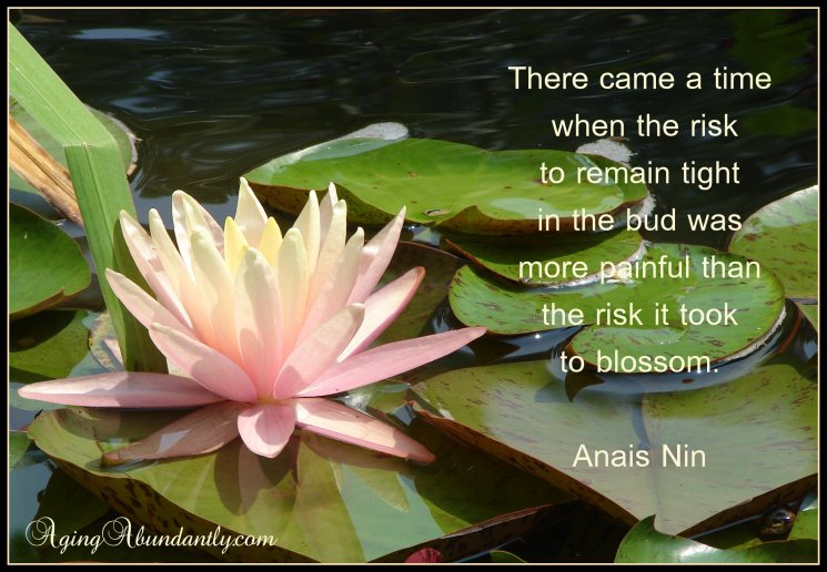Picture quote Anais Nin