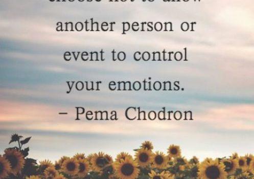Meditations on Peace – Wednesday Wisdom
