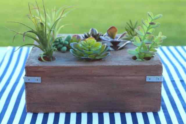 These succulents are fake (finally! ones I can't kill!!) You can get ...