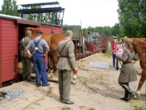 Lastning av hästar i vagnar i Anten. Foto: Patrik Engberg