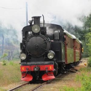 BLJ 6 passerar ödegärdet 2014-06-28. Foto: Lennart Nordh