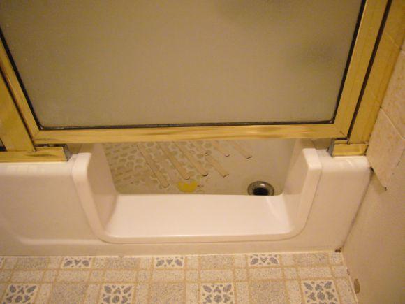 Bathtub Saddle Remodel For Safetywith Door And Splash Guard