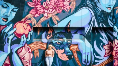 Murals in Newtown, Sydney, Australia