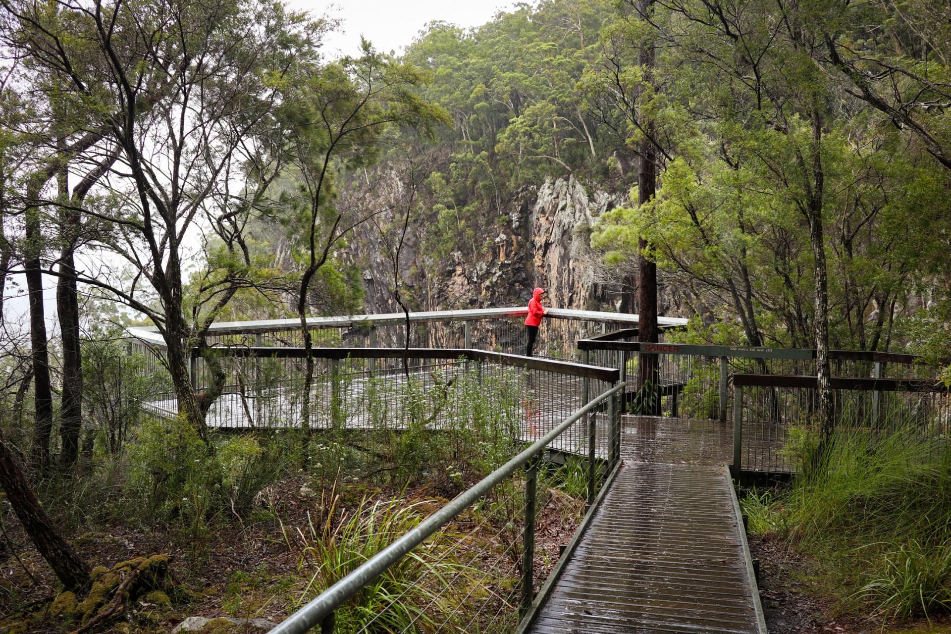 Minyon Falls Lookout, NSW