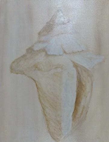 Conch Study 16x20 Oil