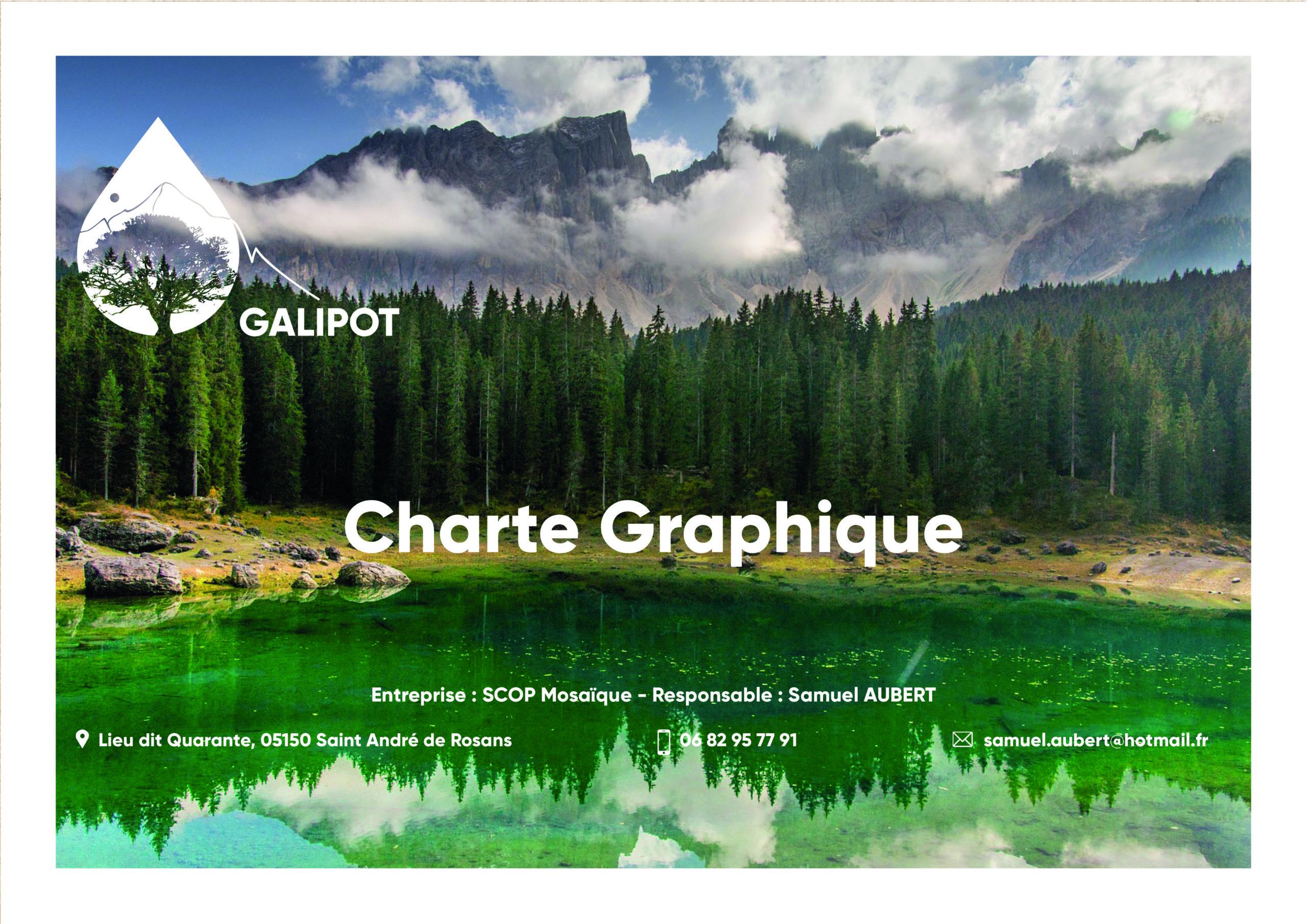charte graphique réalisée pour GALIPOT
