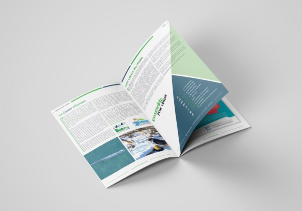 Bulletin Municipal de RIBIERS de janvier 2020