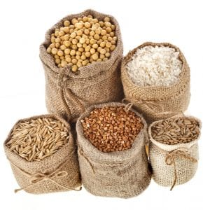 small grains