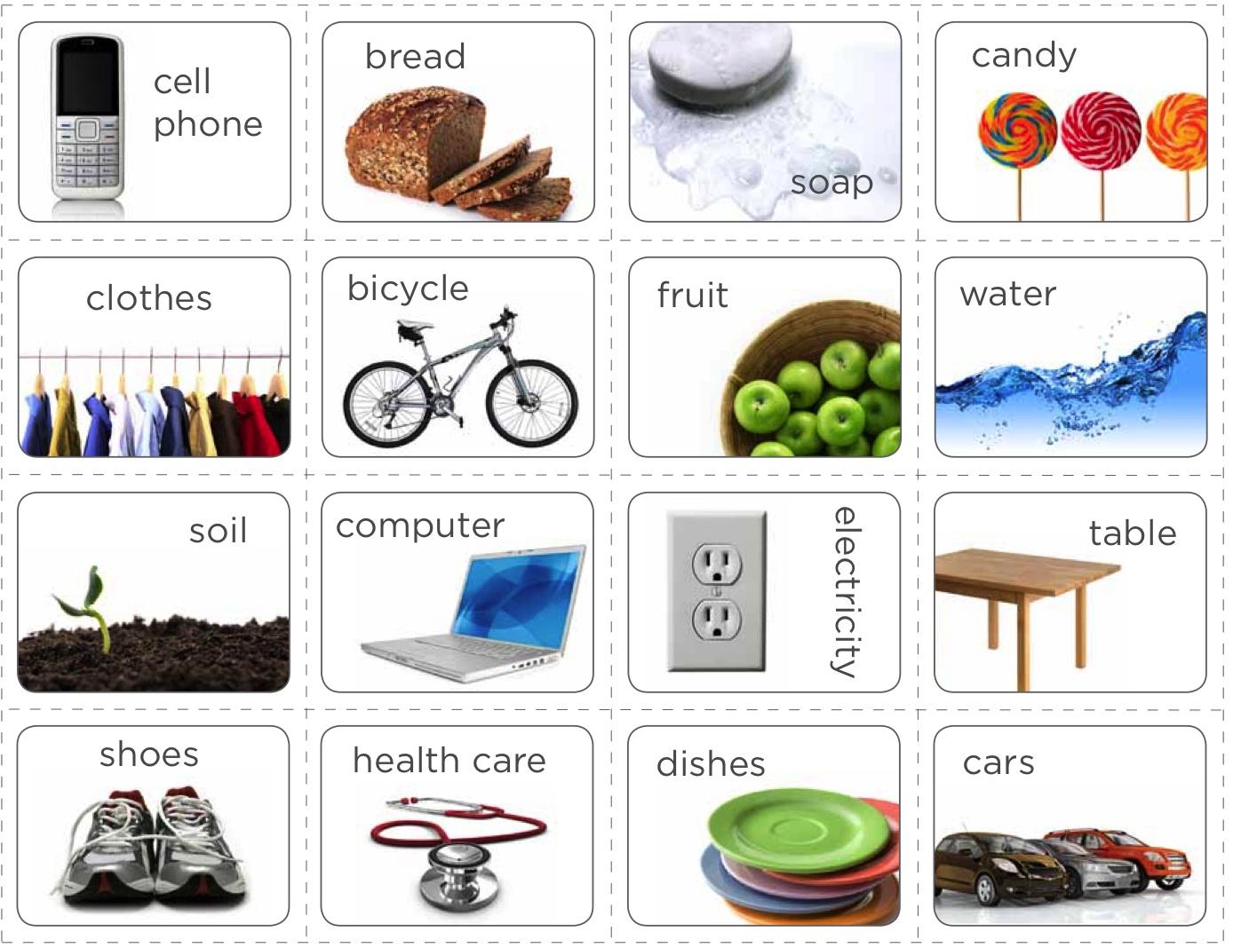 Ecoliteracy Examples
