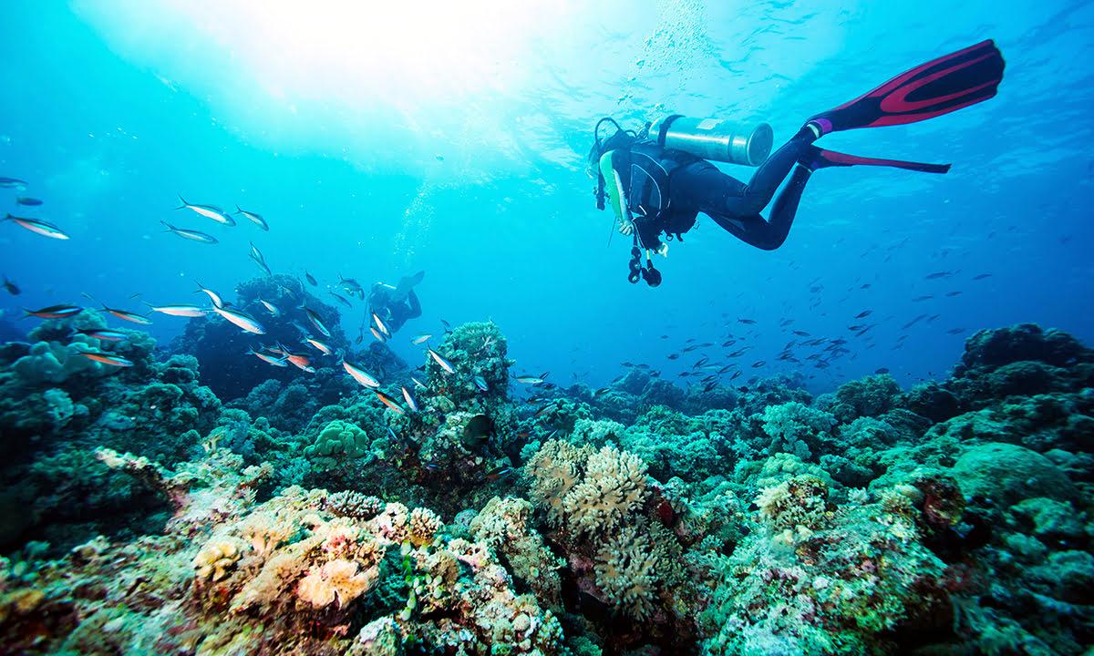 吉達遊玩-沙烏地阿拉伯-潛水-歐普爾海灘