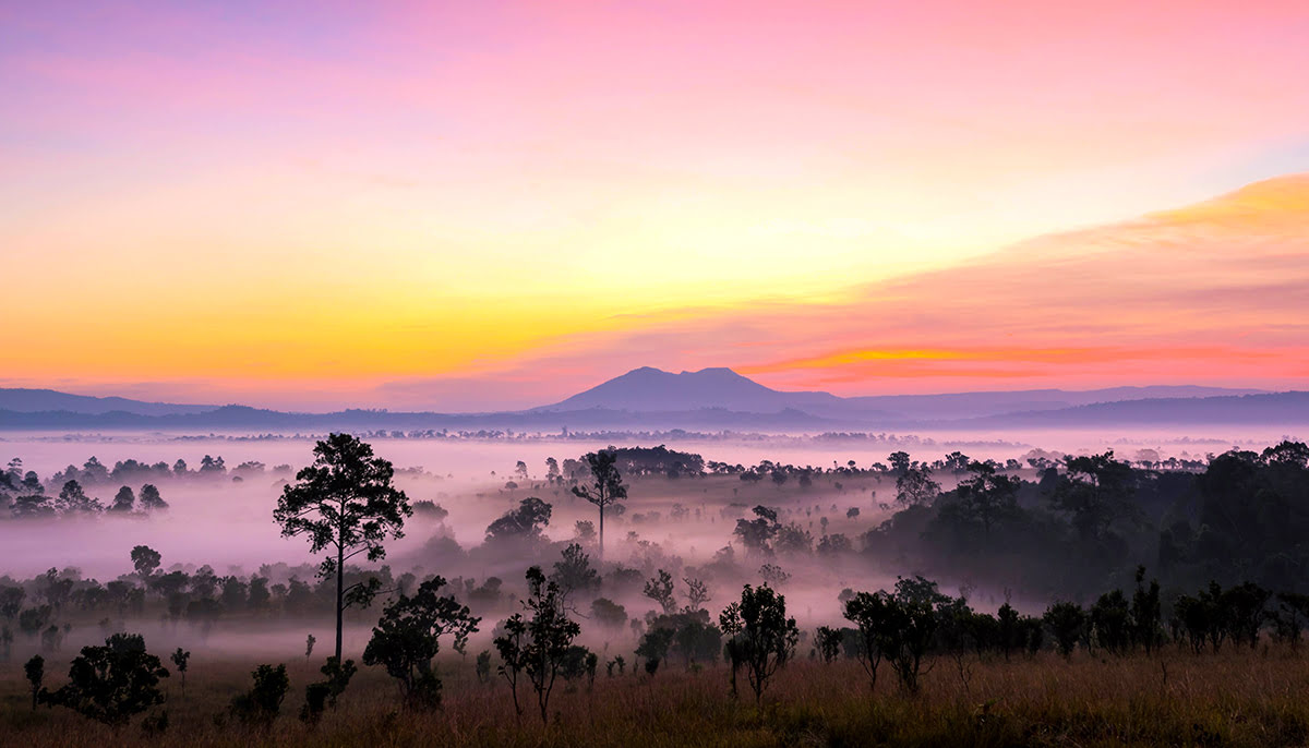 Wilderness hotels-resorts-accommodations-Thung Salaeng Luang National Park