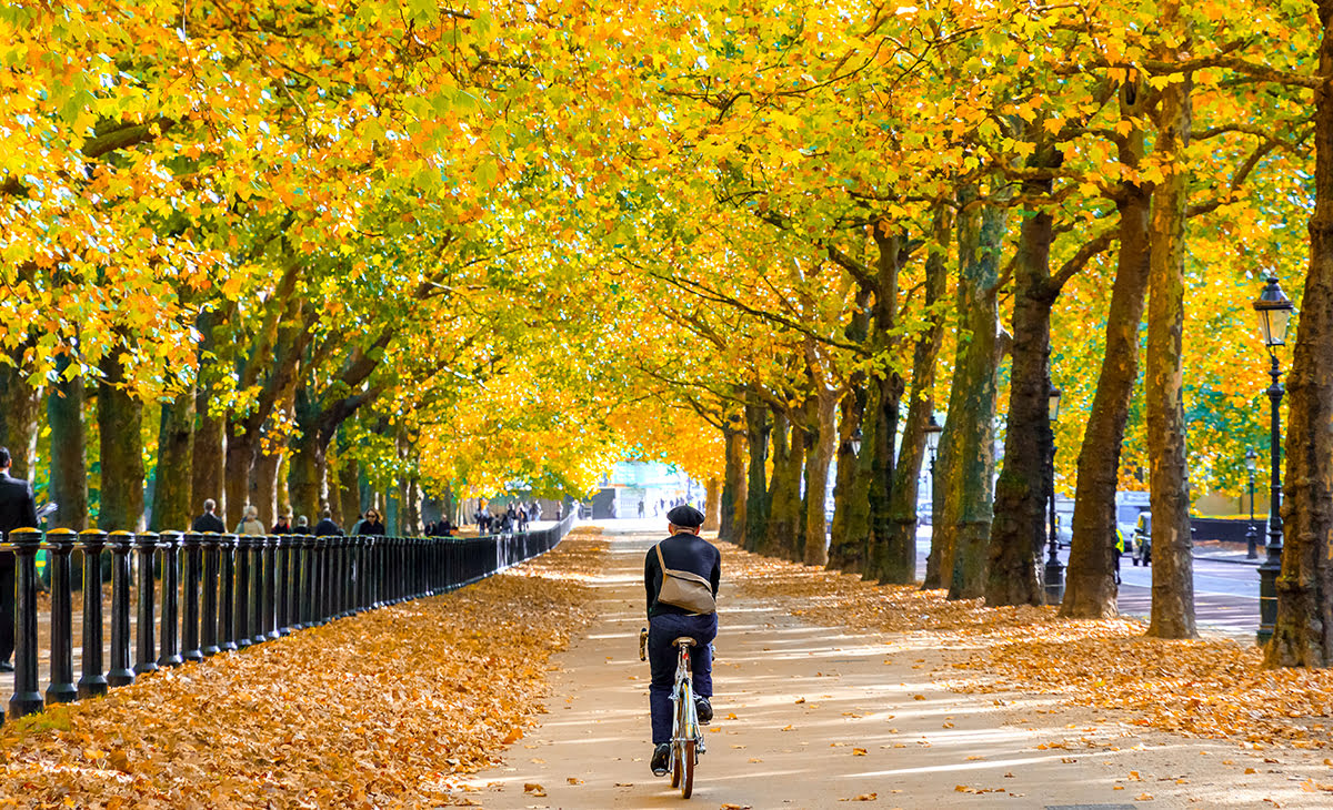 Bicycle tours in Europe-bike-friendly-cities-London parks
