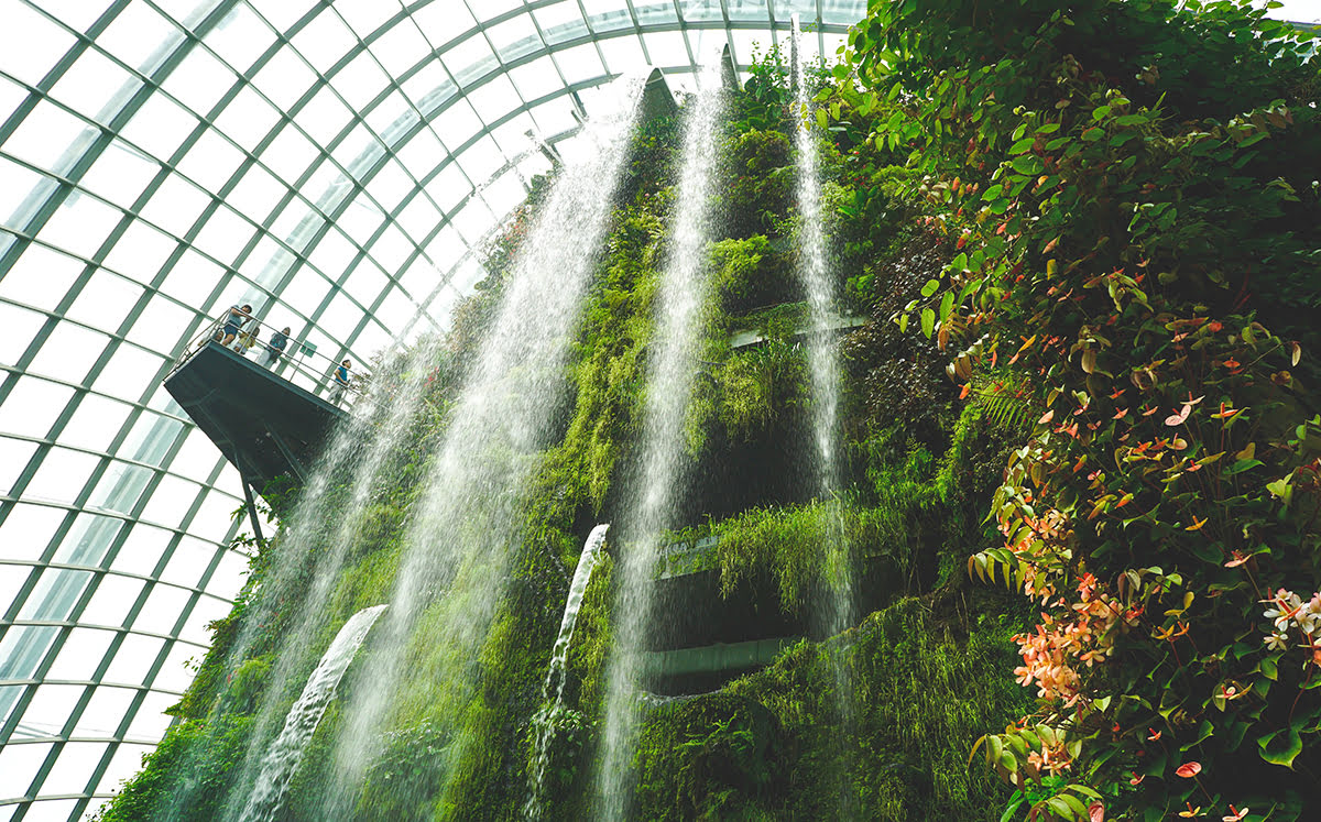 Places to visit in Singapore-Natural Places-green space