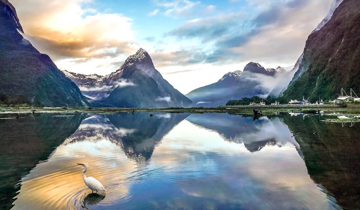 Best road trip destinations-Milford Sound-Fiordland National Park
