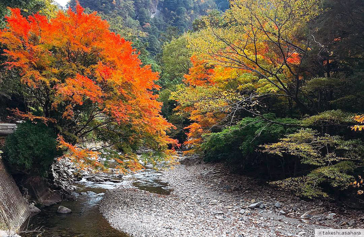 Best time to visit Kyushu-Mitate Valley