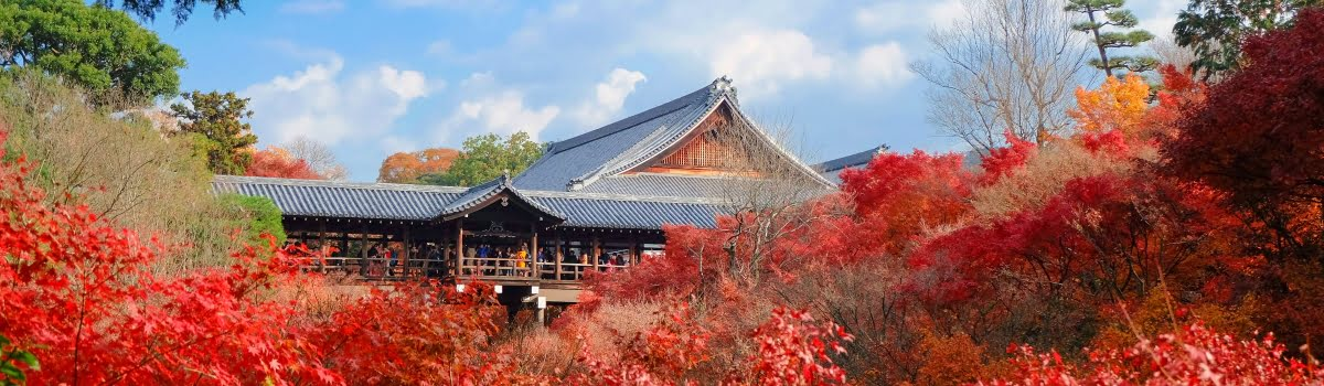 Tofukuji temple-Featured photo (1200x350) Beautiful view of Tofukuji temple