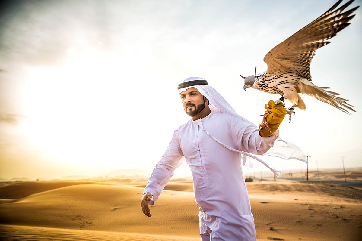 Desert Safari Dubai-camel rides-Bedouin camping-UAE-Bedouin camp-falconry