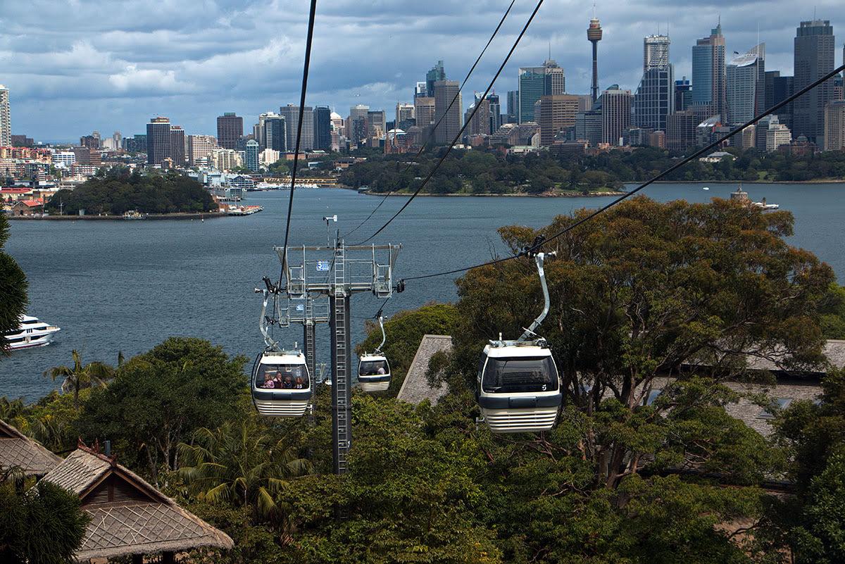 Taronga Zoo Sydney Ticket Klook Australia