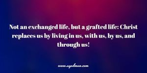 Not an exchanged life, but a grafted life: Christ replaces us by living in us, with us, by us, and through us!