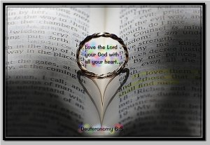 Psalm 2 in the light of God's systems of grace and of government(2) - Kiss the Son! Love the Lord! [picture source: flickr, Love the Lord Your God]