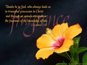 being the captives of Christ in His triumphal procession scattering His fragrance [in the picture: 2 Cor. 2:14]