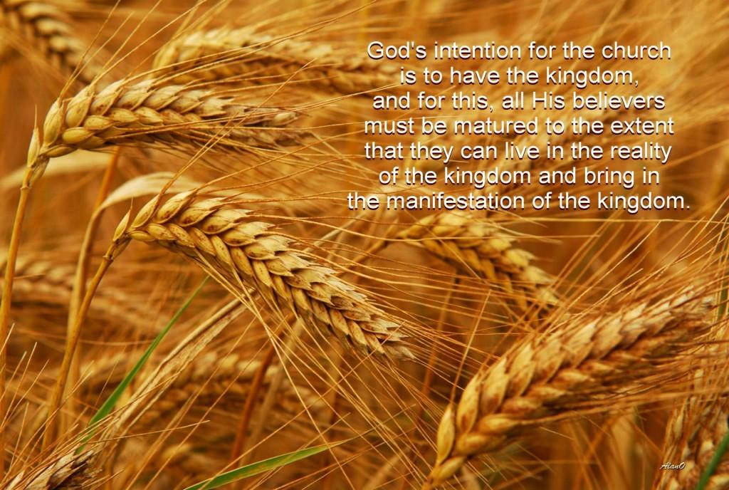 La intención de Dios para la iglesia es tener el reino, y para ello, todos los creyentes deben madurar hasta el punto de que puedan vivir en la realidad del reino de Dios y traer a la manifestación del reino.