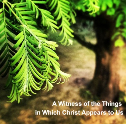 A Witness of the Things in Which Christ Appears to Us