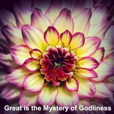 The Church is God Manifested in the Flesh - the Mystery of Godliness