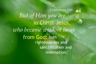Our True Status: in Christ and by the Organic Union we are Both Sons of God and Sons of Abraham