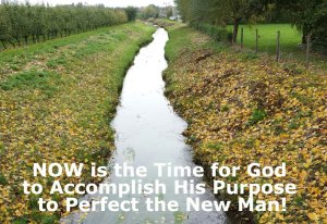 The Goal of the Lord's Recovery is to Bring Forth the New Man, a Full-Grown Corporate Man