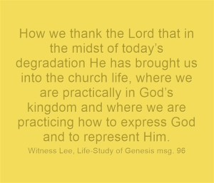 Our Birthright as Men and Believers is to Enjoy God, Express God, and Represent God