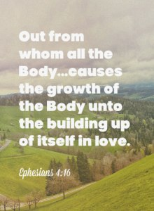 The Growth of the Body Depends on the Growth of God within us as Members of the Body