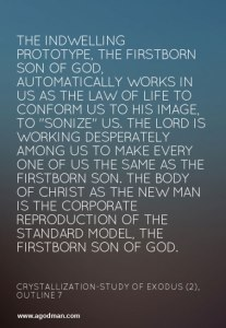 Switching On the Law of Life to be Sonized for the Building up of the Body of Christ