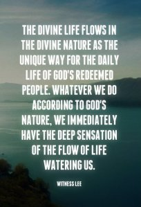 The Divine Life Flowing in the Divine Nature is our Unique Way in our Daily Life