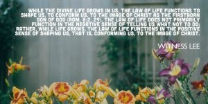 As the Divine Life Grows in us, the Law of Life Shapes us to the Image of Christ