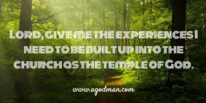 Seeing, Praying for, and Becoming the Temple of God in the Divine and Mystical Realm