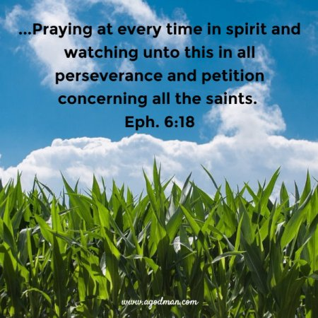 Eph. 6:18 ...Praying at every time in spirit and watching unto this in all perseverance and petition concerning all the saints.