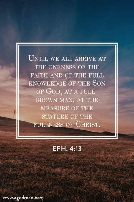 Eph. 4:13 Until we all arrive at the oneness of the faith and of the full knowledge of the Son of God, at a full-grown man, at the measure of the stature of the fullness of Christ.