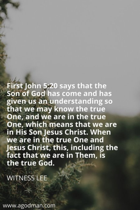 First John 5:20 says that the Son of God has come and has given us an understanding so that we may know the true One, and we are in the true One, which means that we are in His Son Jesus Christ. When we are in the true One and Jesus Christ, this, including the fact that we are in Them, is the true God. Witness Lee
