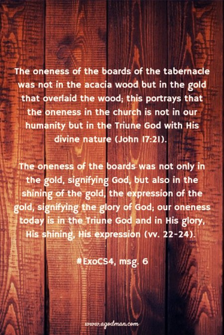 The oneness of the boards of the tabernacle was not in the acacia wood but in the gold that overlaid the wood; this portrays that the oneness in the church is not in our humanity but in the Triune God with His divine nature (John 17:21). The oneness of the boards was not only in the gold, signifying God, but also in the shining of the gold, the expression of the gold, signifying the glory of God; our oneness today is in the Triune God and in His glory, His shining, His expression (vv. 22-24). #ExoCS4, msg. 6