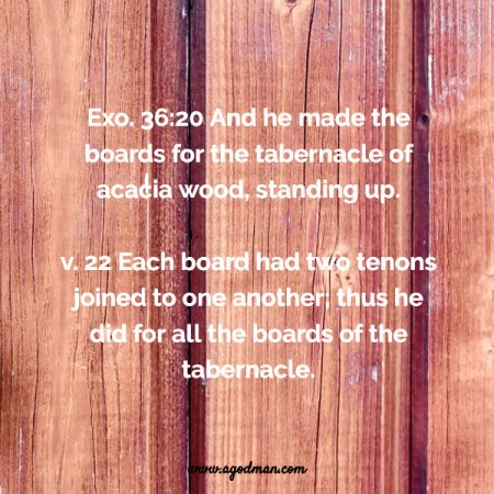 Exo. 36:20, 22 And he made the boards for the tabernacle of acacia wood, standing up. Each board had two tenons joined to one another; thus he did for all the boards of the tabernacle.