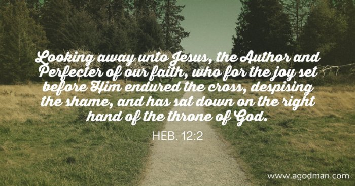 Heb. 12:2 Looking away unto Jesus, the Author and Perfecter of our faith, who for the joy set before Him endured the cross, despising the shame, and has sat down on the right hand of the throne of God.