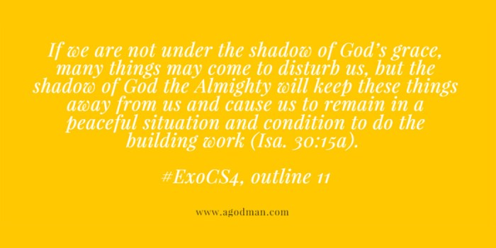 If we are not under the shadow of God's grace, many things may come to disturb us, but the shadow of God the Almighty will keep these things away from us and cause us to remain in a peaceful situation and condition to do the building work (Isa. 30:15a). #ExoCS4, outline 11