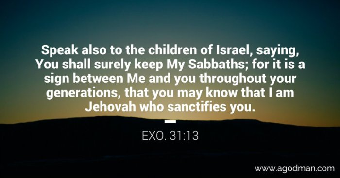 Exo. 31:13 Speak also to the children of Israel, saying, You shall surely keep My Sabbaths; for it is a sign between Me and you throughout your generations, that you may know that I am Jehovah who sanctifies you.