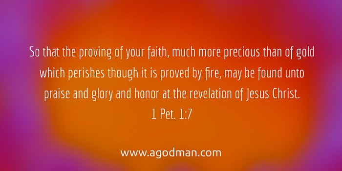 1 Pet. 1:7 So that the proving of your faith, much more precious than of gold which perishes though it is proved by fire, may be found unto praise and glory and honor at the revelation of Jesus Christ.