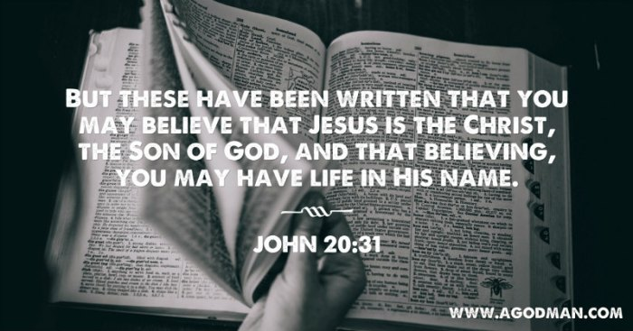 John 20:31 But these have been written that you may believe that Jesus is the Christ, the Son of God, and that believing, you may have life in His name.