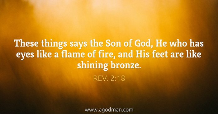 Rev. 2:18 These things says the Son of God, He who has eyes like a flame of fire, and His feet are like shining bronze.